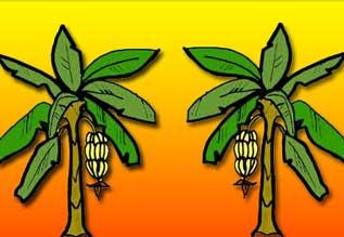 Image result for கல்யாண வீட்டில் வாழை